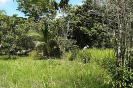 Farm Land in Toledo District Belize