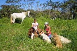 Costa Rica Properties: Organic-Bio / Farms