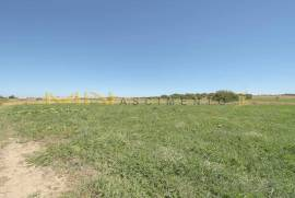 24 hectar land close to Beja, Alentejo.
