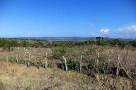 OCEAN VIEW LAND FOR SALE NEAR PUERTO PLATA