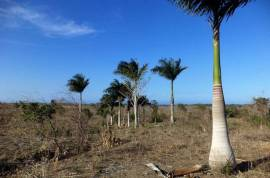 OCEAN VIEW LAND FOR SALE NEAR PUERTO PLATA